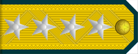 General rank insignia (North Korean police).png