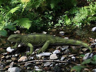 Rhynchocephalia - Life reconstruction of Gephyrosaurus brindensis