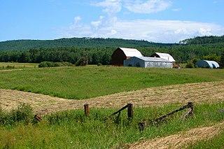 Gillies, Ontario Township in Ontario, Canada