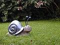 Glebe house garden - geograph.org.uk - 431458.jpg