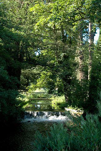Glympton - The River Glyme at Glympton