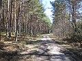 Gmina Narol, Poland - panoramio (3).jpg