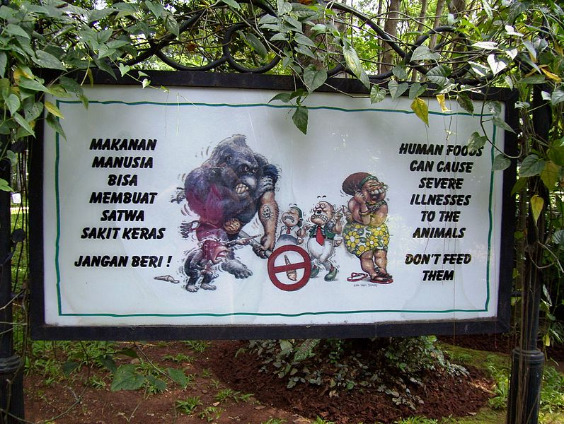 File:Gorilla sign.jpg