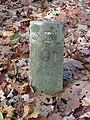 Grafsteen 8 Anoniem begraafplaats De Kemmer Oirschot.JPG