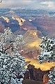 Grand Canyon - panoramio (37).jpg