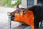 Grilled pork, Ecuador.jpg