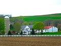 Grosse Family Farm - panoramio.jpg