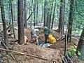 Grow Site Cleanup (29803085423).jpg