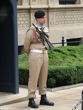 Luxembourg Army - Guard in front of the Grand Ducal Palace, Luxembourg in 2009