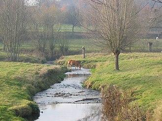 Gulpen-Wittem - The river Gulp near Slenaken