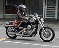 Harley (31501862480).jpg