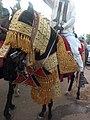 Hausa horse decoration 04.jpg