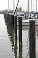 Havre de Grace, Maryland - panoramio (38).jpg