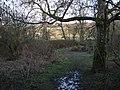Hennock bridleway 22 approaches the River Teign - geograph.org.uk - 1653089.jpg
