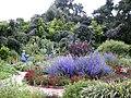 Herb Garden, Spring Blooms, Huntington.jpg