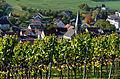 Herbstlicher Spaziergang durch die Becksteiner Weingärten. 04.jpg