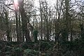 Hidden Pond, Lower Hook - geograph.org.uk - 690522.jpg