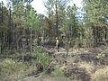 High Park Fire, 20120620-FS-UNK-0023.jpg
