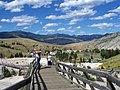 Hill of Mammoth hot springs - panoramio.jpg