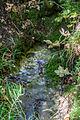 Hoher Brunnen 07.jpg