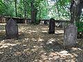 Hoješín F. Židovský hřbitov.jpg