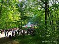 Holodny Yar forest 08.jpg