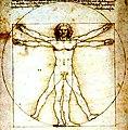 Homem Vitruviano - Da Vinci.jpg