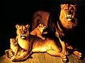 Huet lions.jpg