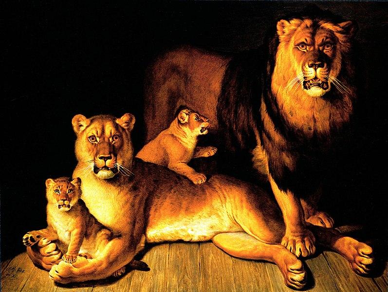 File:Huet lions.jpg