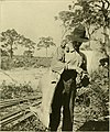 Hunting and fishing in Florida - including a key to the water birds known to occur in the State (1896) (14747946621).jpg