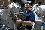 ISS-56 Ricky Arnold inspects U.S. spacesuits in the Quest airlock.jpg