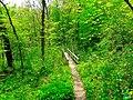 Ice Age Trail Bridge - panoramio (1).jpg