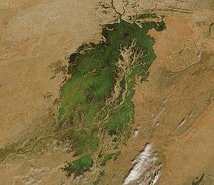Inner Niger Delta - November 2007