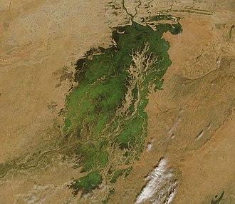 Inner Niger Delta - Image: Inland Niger Delta 2007