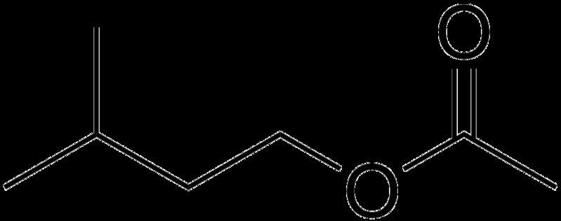 isoamyl acetate Isoamyl acetate, isoamyl acetate supplier, isoamyl acetate distributor, cas 123-92-2, isoamyl acetate manufacturer, isoamyl acetate wholesale.