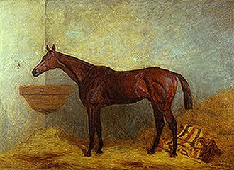 Isonomy (horse) - Isonomy by Harry Hall
