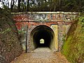 JR Shinonoi Line Urushikubo Tunnel ruins west.jpg