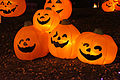 Jack O Lanterns.jpg