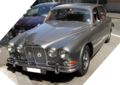 Jaguar-IMG 1890.jpg