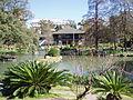 Japanese Garden in Buenos Aires.JPG