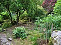 Japanese garden in Giggle Alley Woods, Eskdale Green - geograph.org.uk - 682997.jpg