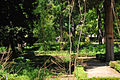Jardin Botanico (7).jpg