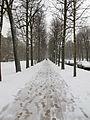 Jardin du Ranelagh - neige 6.jpg