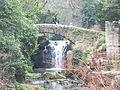 Jesmond Dene Mill 1164.JPG
