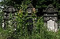 Jewish cemetery Lodz IMGP6725.jpg