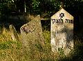 Jewish cemetery Otwock Karczew Anielin IMGP6748.jpg