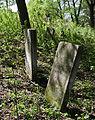 Jewish cemetery Zelechow IMGP3215.jpg