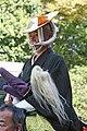 Jidai Matsuri 2009 135.jpg