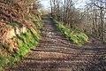 Junction of Paths below Black Hill - geograph.org.uk - 685986.jpg