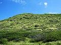 Kaiwi State Scenic Shoreline 02.jpg